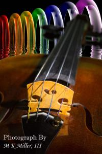 New Violin And Music Photographs